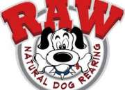 raw food for dogs  Dog Food Frozen chicken wings