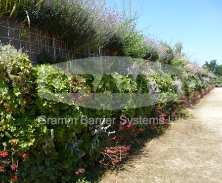 Environmental noise barriers to cater with the problem of irritating sounds