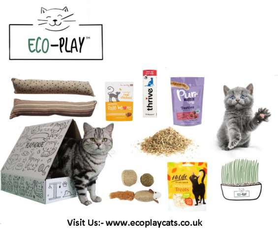 Buy cat toys online uk