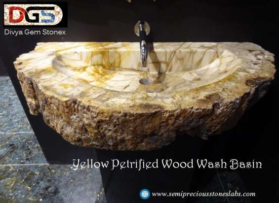 Petrified wood slabs