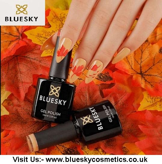 Bluesky nail kit