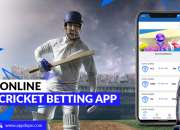 Revolutionize the Market with the Cricket Betting App