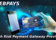 Getting the right high risk payment gateway providers