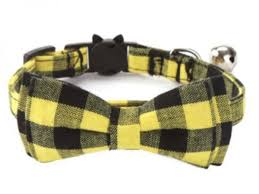 Best cat collars uk- zacal cat collars