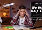 Expert Online Dissertation Writing London