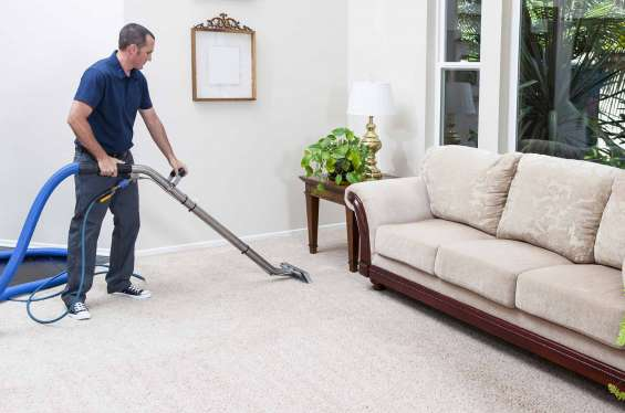 All you need to know about highest rated carpet cleaning companies solihull