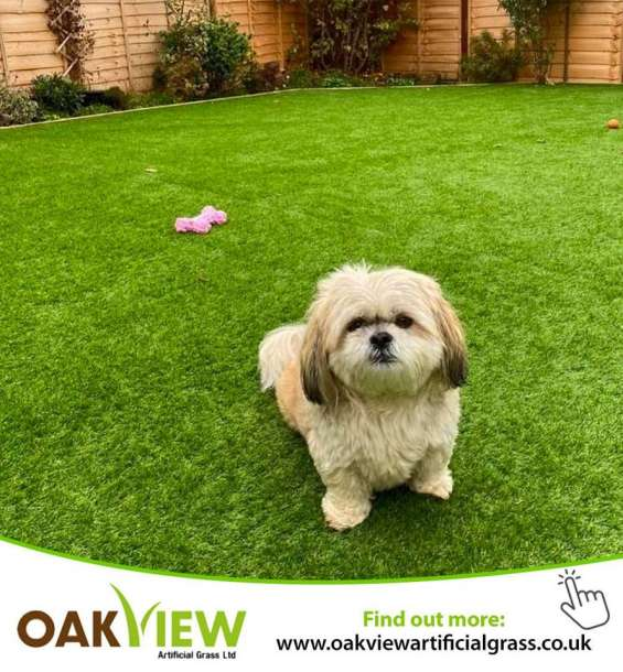 Best quality artificial grass in northampton