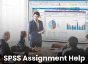 SPSS Tutor – Statistical Consulting Service and Assignment Help