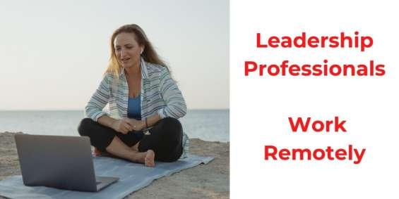 Leadership professionals - work online remotely